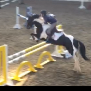 Serious Jumping Pony