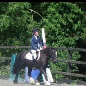Talented, Fun well used 12.2hh pony