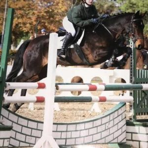 Jumping pony with 107 sji points