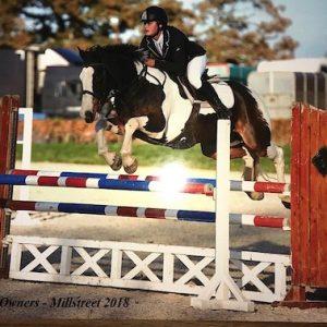Grade A jumping pony