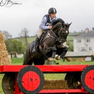 Superb 5yr Old Young Event Horse