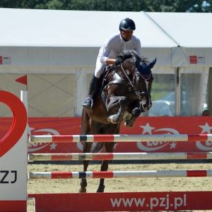 Top Event mare for sale