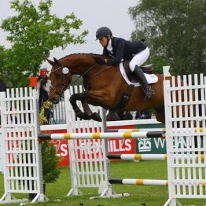 Top event horse 16.3hh 8yr olds POA