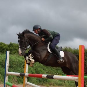 7yr Old jumping pony
