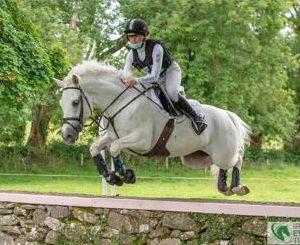 Top jumping Connemara pony