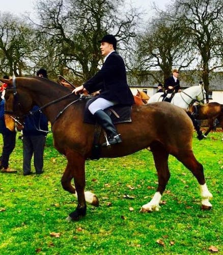 16.3hh 6yr Old Super experienced hunter €10,000.00