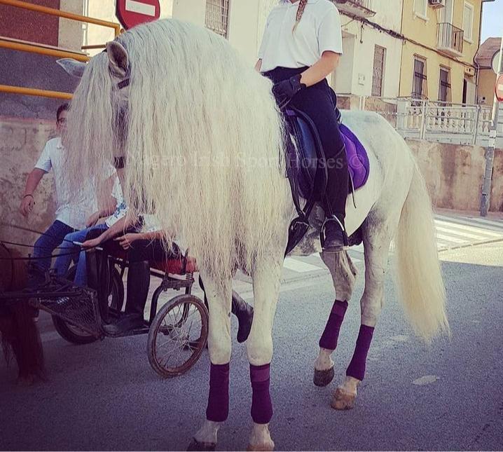 Just OMG!!! White Unicorn 🦄 4