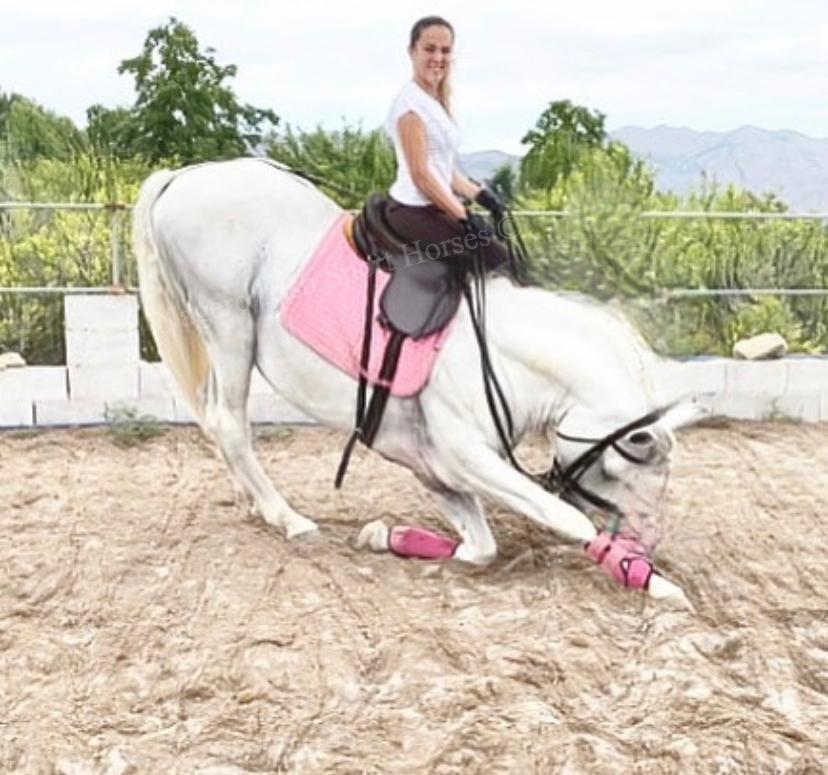 Just OMG!!! White Unicorn 🦄 7