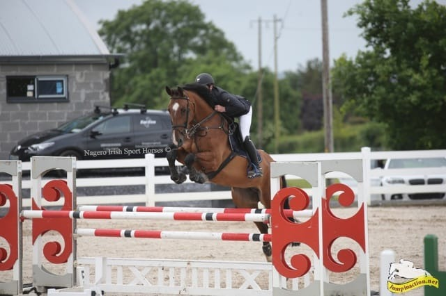 Super 5 year old qualified for Dublin